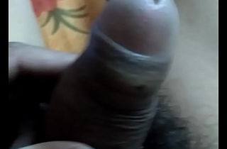 Cock Show